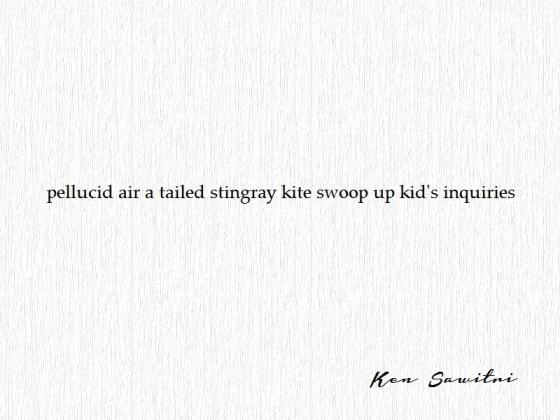 Ken Sawitri_Under The Basho 20014_pellucid air